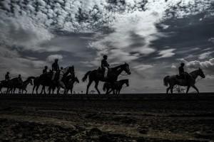 horse-race-1507078_1920